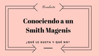 CONOCIENDO A UN SMITH MAGENIS: ¿QUÉ LE GUSTA Y QUÉ NO?