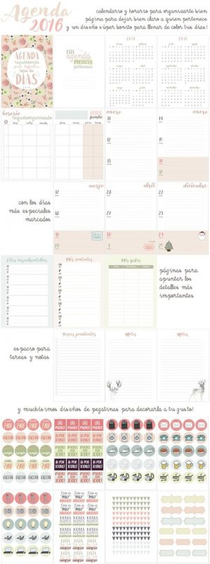 calendario-escolar-y-niños-con-smith-magenis