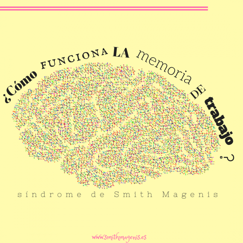 la_memoria_de_trabajo_o_memoria_operativa