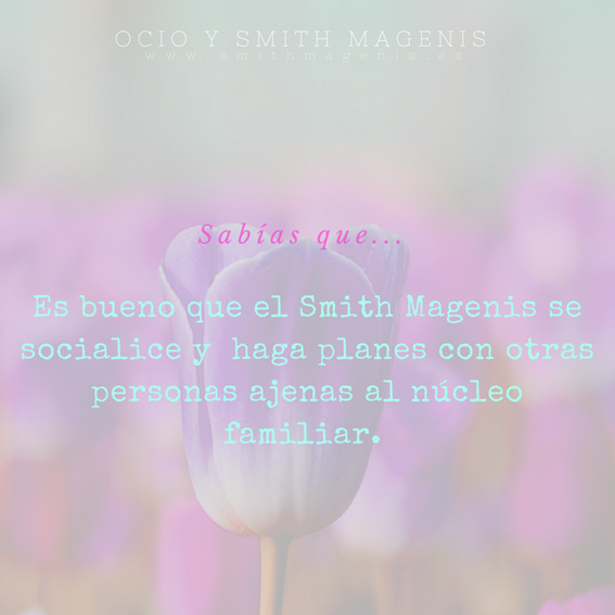 10-ideas-para-entretener-a-niños-con-sindrome-de-smith-magenis