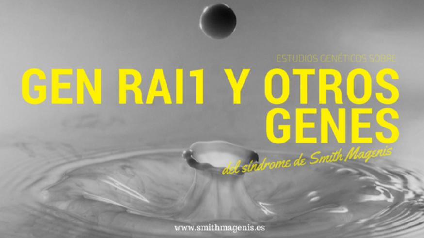 """<span class=""""post_or_pages_title"""">RELACIÓN ENTRE EL GEN RAI1 Y EL SMITH MAGENIS</span>"""