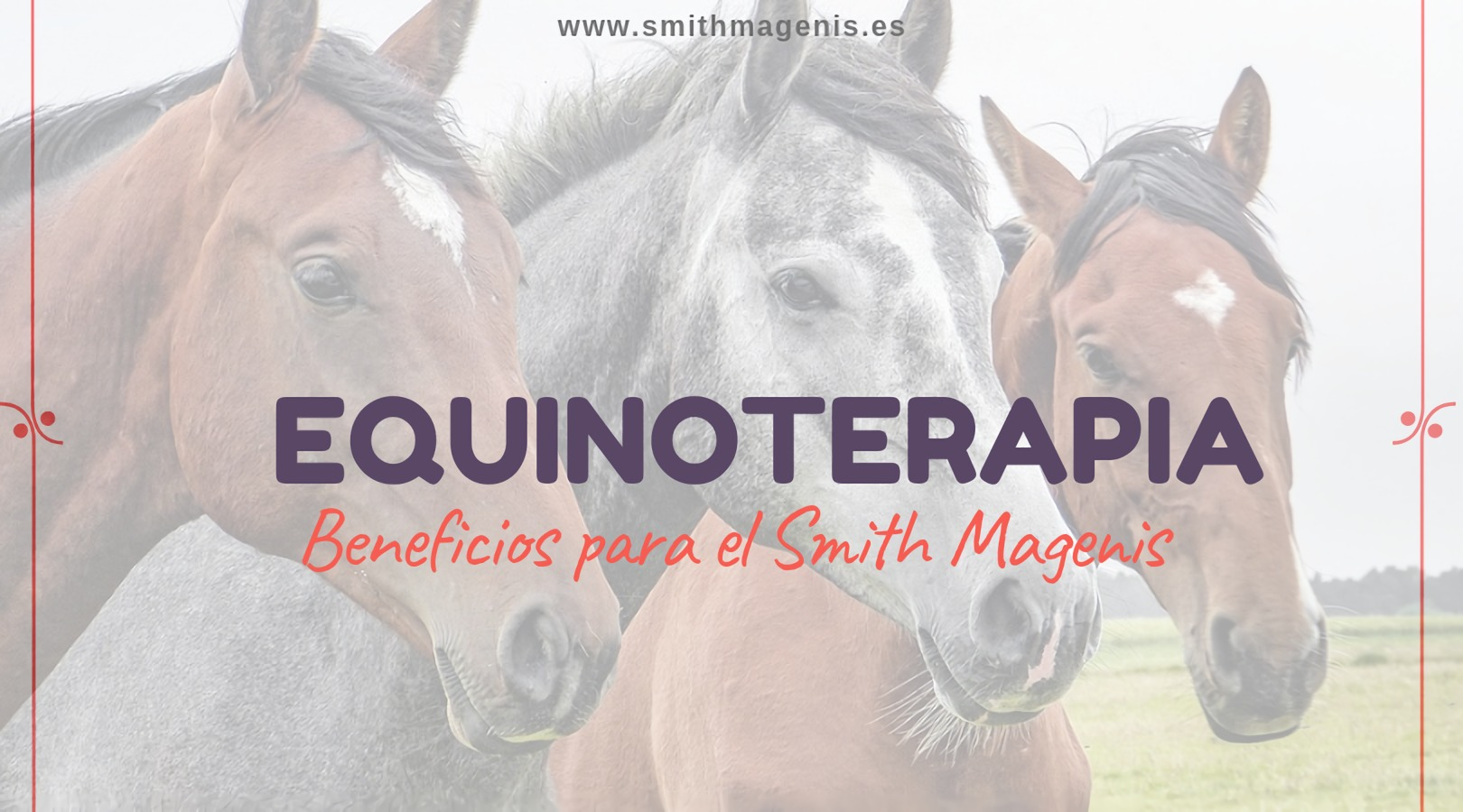 equinoterapiaparapersonasconSmithMagenis